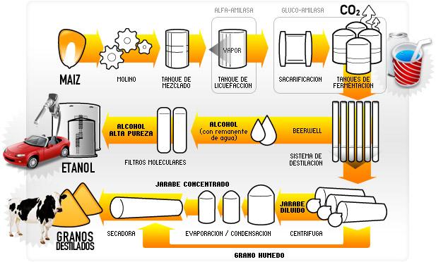 Proceso productivo etanol
