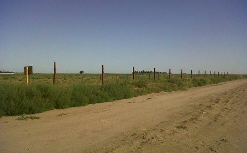 Campo construccion planta Bio4
